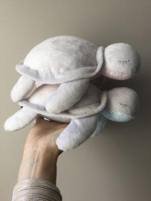 Bébé Tortue de 15cm
